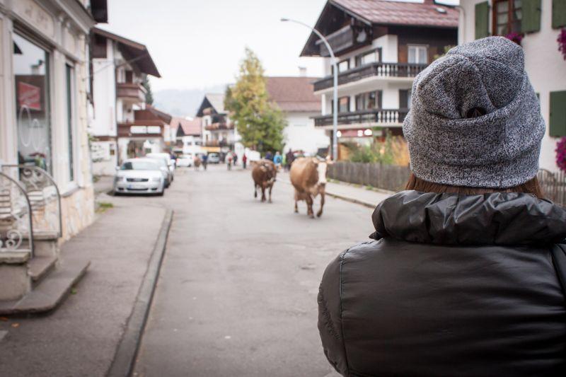 Village Allgäu