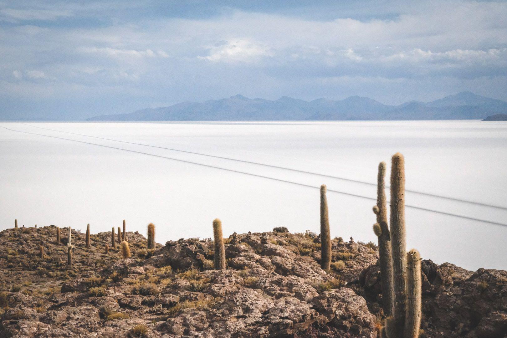 Incahuasi dans le désert d'Uyuni